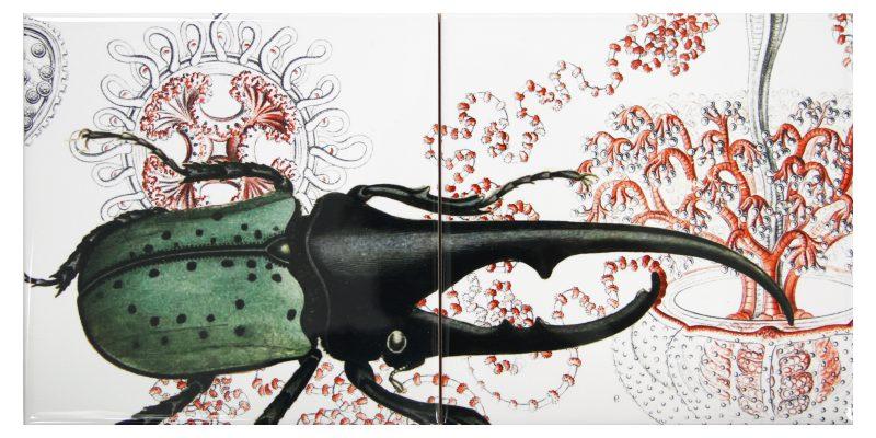 Santa Tosta | Käfer Flliesenbild